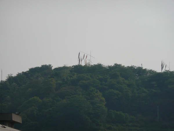 山頂のこいのぼり
