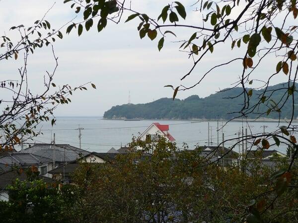 木陰から大島が見える