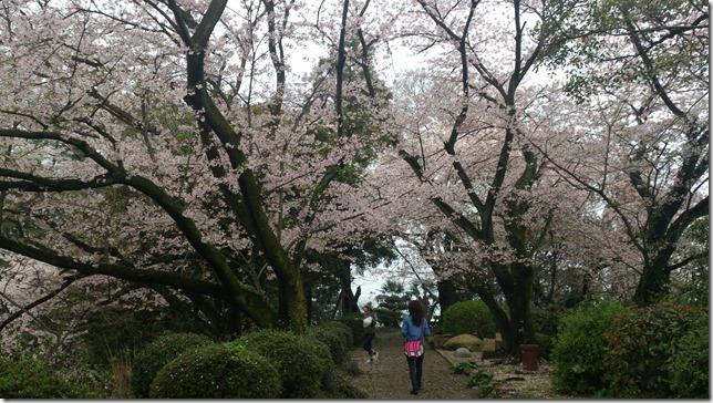 廣瀬公園:娘と共に