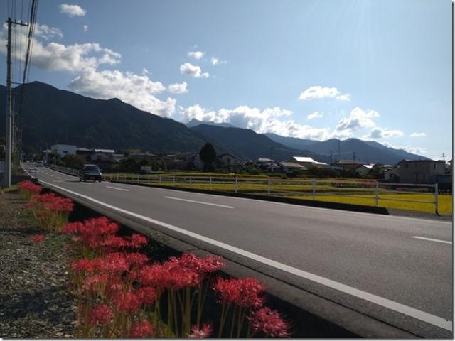 山の稜線と彼岸花